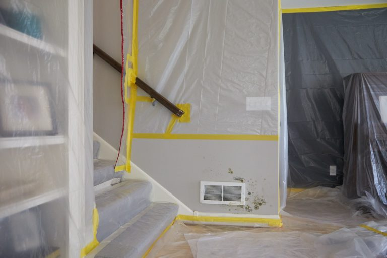 JCP_ServiceMaster_Restore_Mold_Damaged_0005