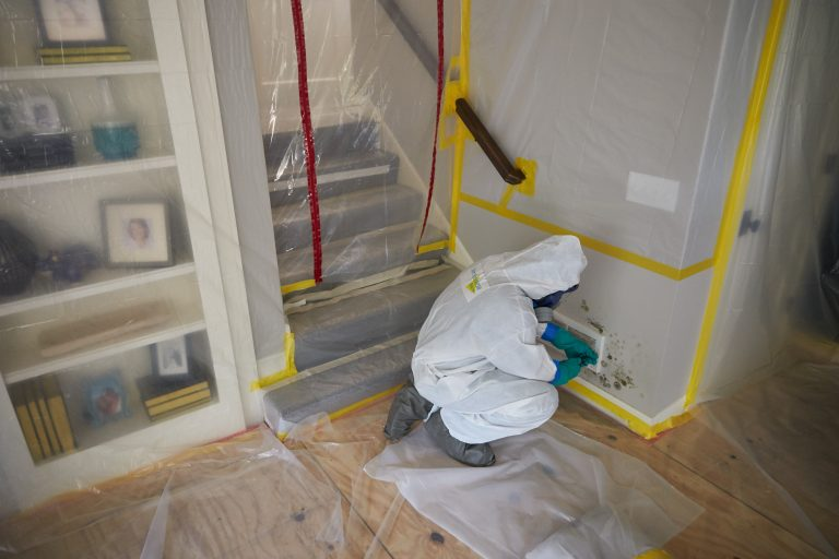 JCP_ServiceMaster_Restore_Mold_Damaged_0126
