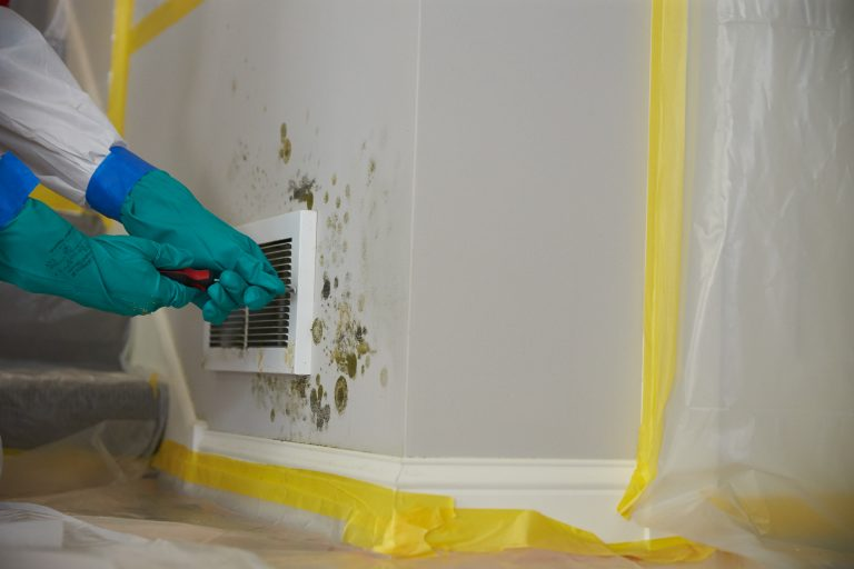JCP_ServiceMaster_Restore_Mold_Damaged_0143
