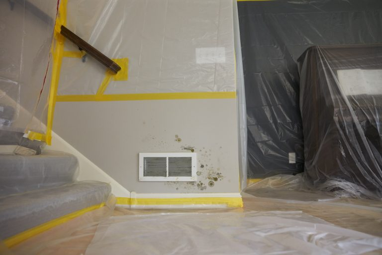 JCP_ServiceMaster_Restore_Mold_Damaged_0169