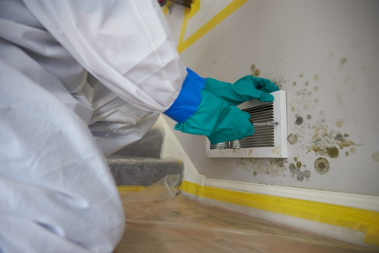 JCP_ServiceMaster_Restore_Mold_Damaged_0218