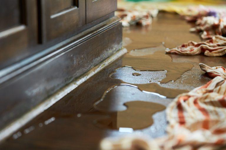JCP_ServiceMaster_Restore_Water_Damaged_0610